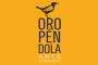 oropendola_0