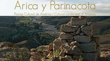 arica y parinacota 555