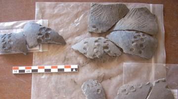 CeramicasECU 750